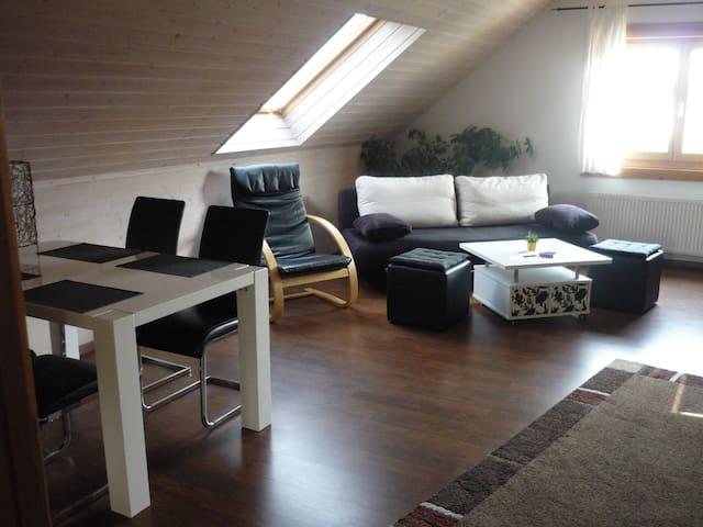Apartment Aichelberg Holzblockhaus - Holzmaden - Appartement