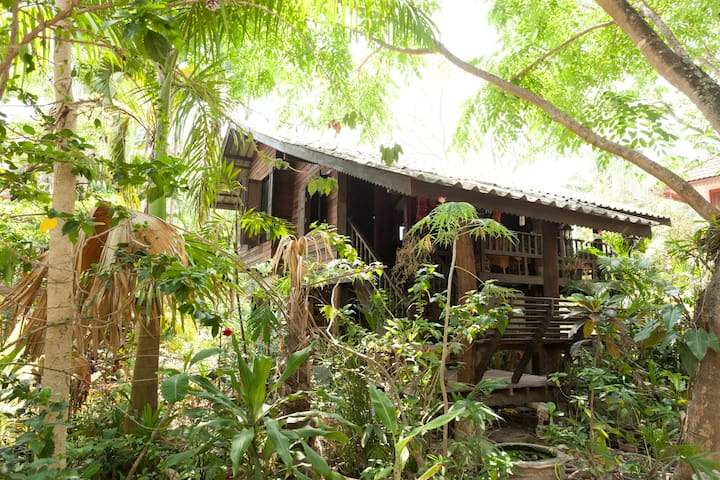 Guest House in the Trees - Chiang Mai - Hus
