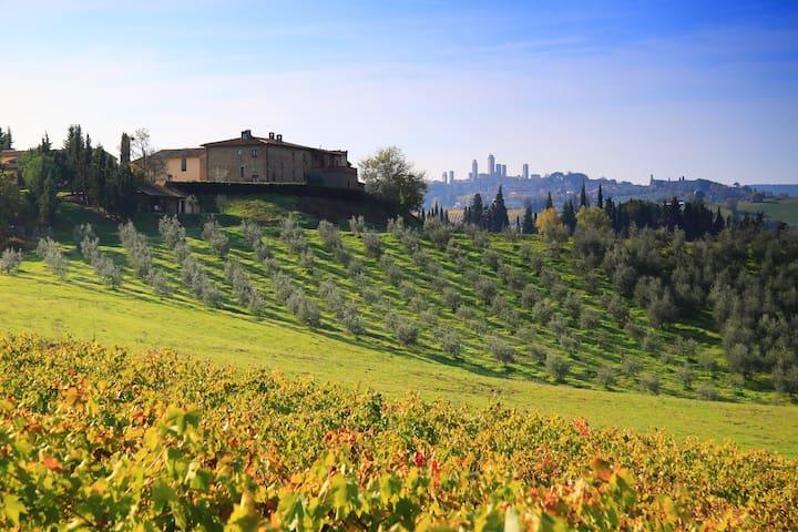 San Gimignano, Montegonfoli SIX - San Gimignano - Apartemen