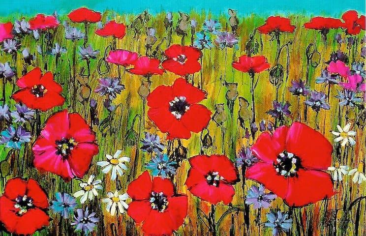 Poppies - Arnside, South Lakes & Morecambe Bay - Arnside