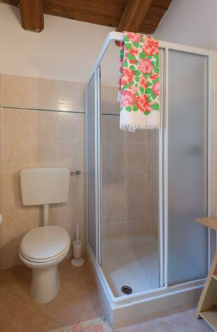 Residence Joy Center: CARLA - Villar Pellice - Apartament