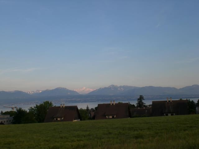 Face to the lake and the mountains - Morges - Hus