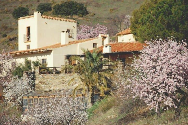 Casa Campana with pool & tennis - Alfornón - Casa