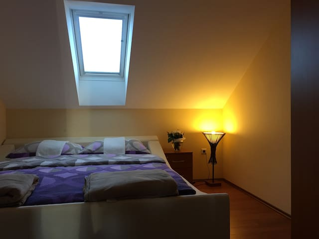 One-Bedroom Apartment (2 Adults) - Samobor - 公寓