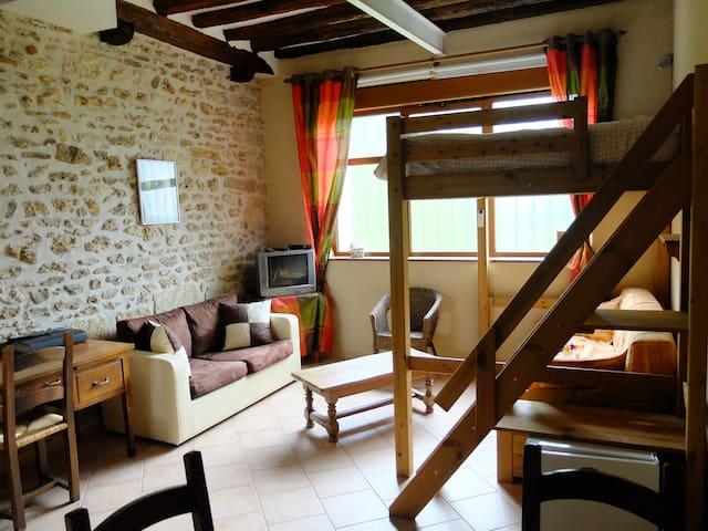 Studio dans une ferme - Saint-Martin-de-Bréthencourt - Loft