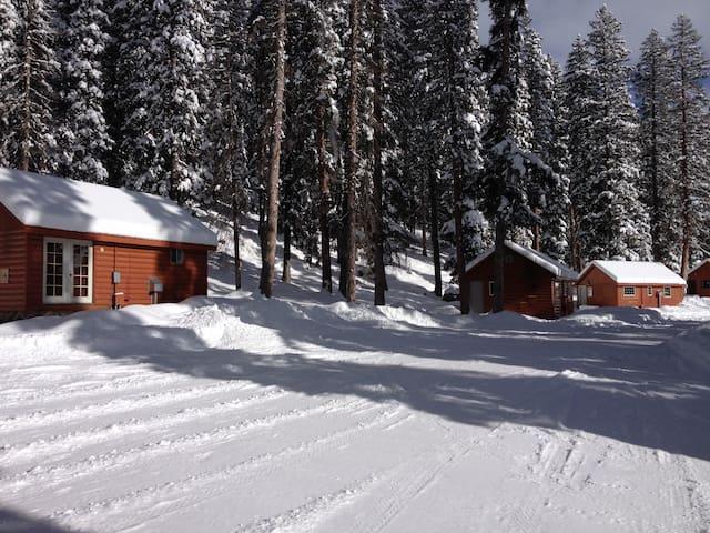 Thunder Mountain Lodge Cabin #4 - Cedaredge - Blockhütte