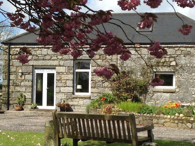 BLOSSOM COTTAGE - Knockfield, Castledermot, Athy  - Ev