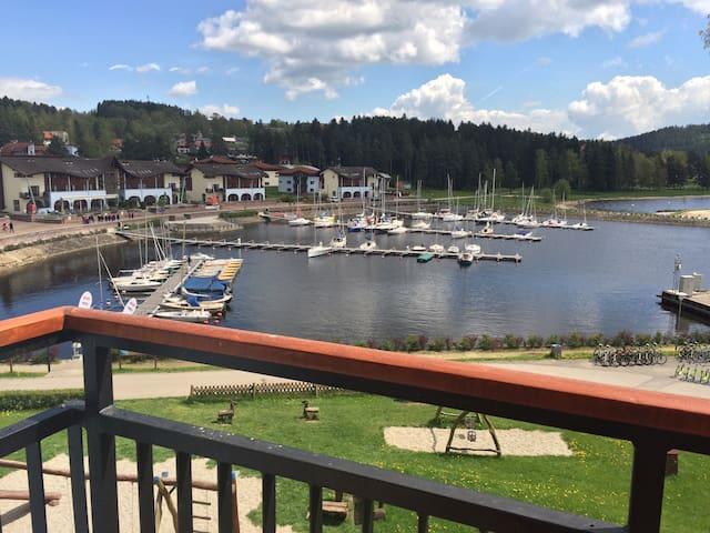 Lake Front!  Lipno Marina  SPRING SENSATION 25%OFF - Lipno nad Vltavou - Radhus
