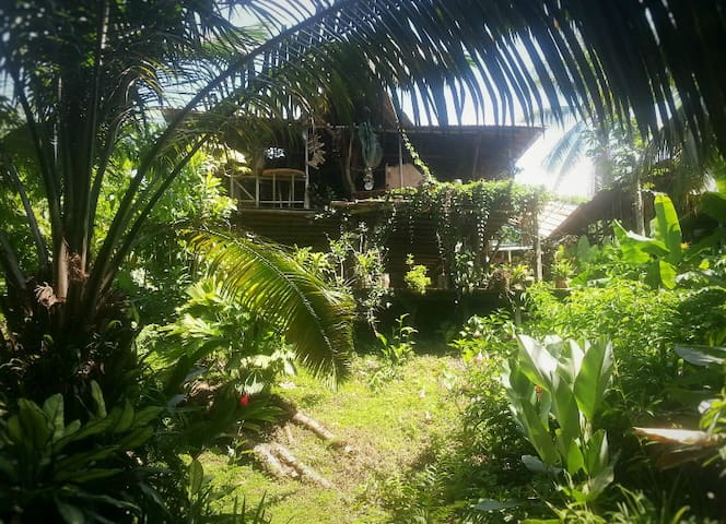 El Jardin Tortuga - Cabinas - Ojochal - エコロッジ