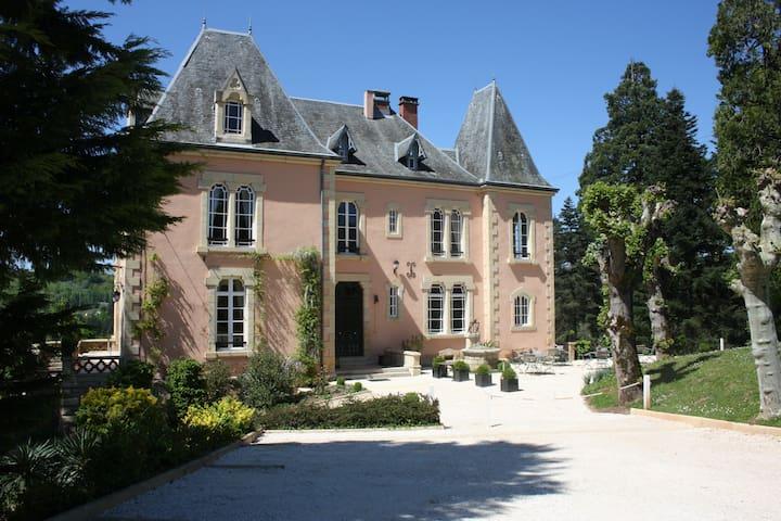 Chateau du Bois Noir - Perpezac-le-Blanc - Bed & Breakfast