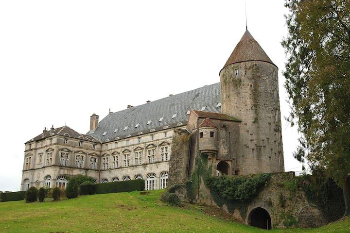 B&B Le Chateau de Frasne - Frasne-le-Château - Kastély