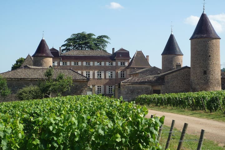 CHASSELAS CASTLE COTTAGE FOR RENT - Chasselas - House
