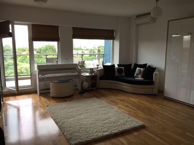 Modern, cozy studio in Bucharest! - București - 公寓