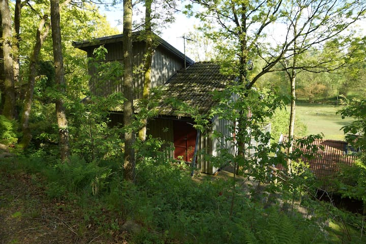 A little cottage in the forest - Sällstorp - Bed & Breakfast