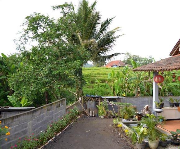 Homestay Bundaiyah Bugel Salatiga - Salatiga City - Talo