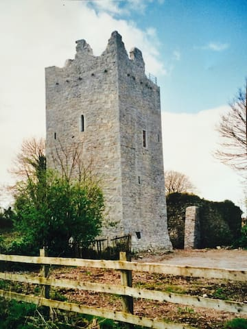 Ballintotis Castle, East Cork - Castlemartyr