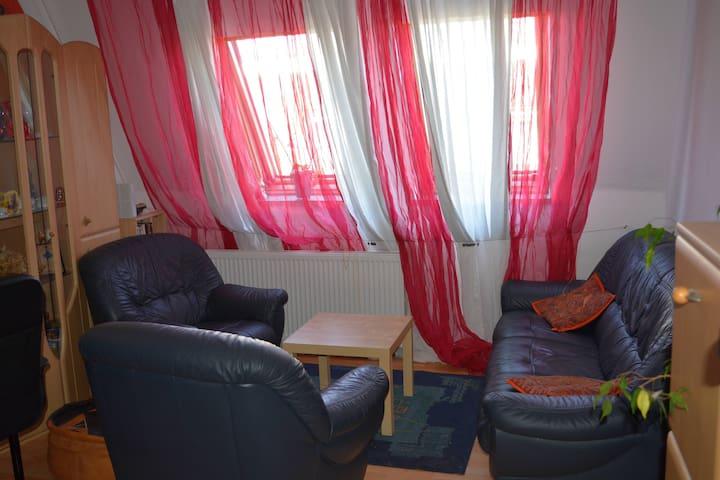 cosy flat in Jena - Jena