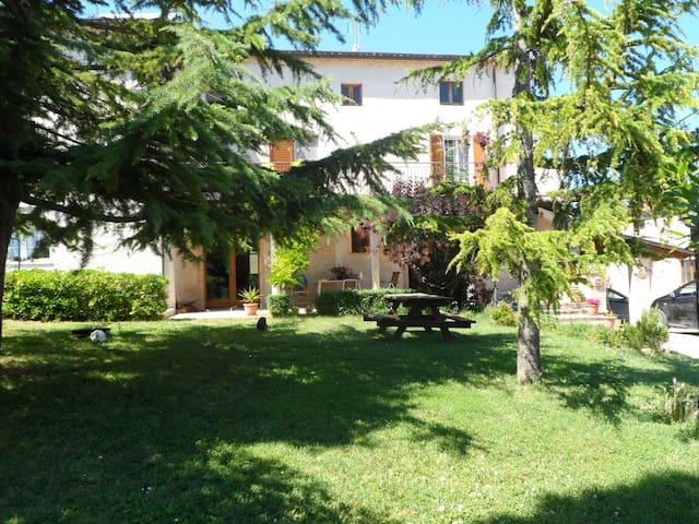 Delizioso appartamento in collina - Monterubbiano - Appartement