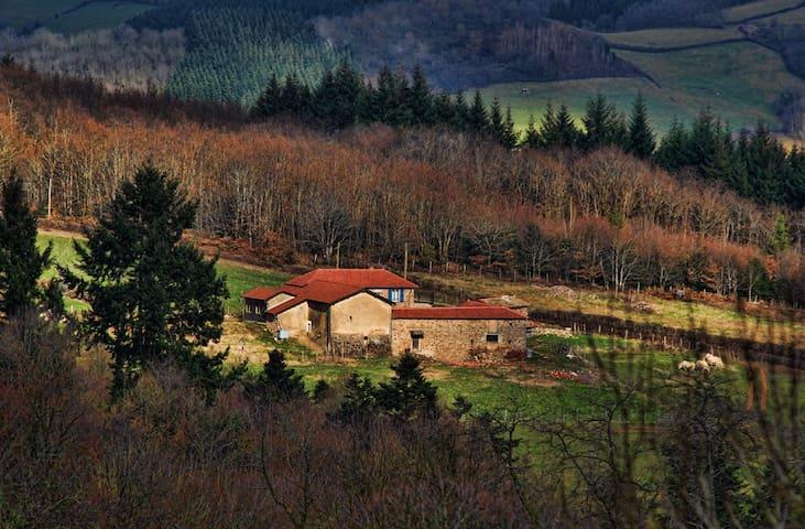Gite Le Bernachon Saint-Point - Saint-Point, Bourgogne - Hus