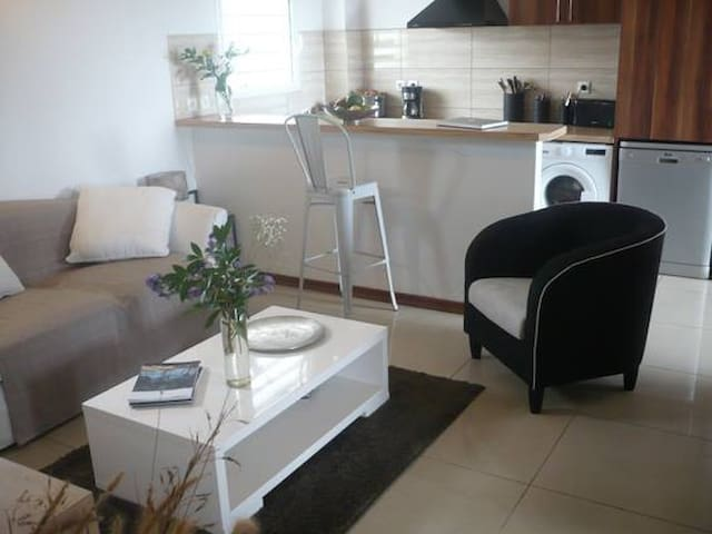 bel appartement grand standing - Saint-Denis - Appartement