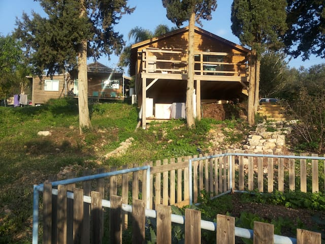 wood house facing sea and wood - Ein Hod