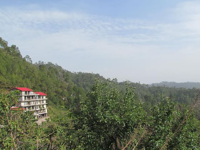 Whispering Pines Home Stay,Dharmpur - Tehsil Kasauli