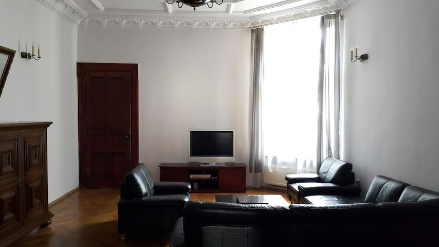 Apartment in Lodz Center  170m2 + Parking + WiFi - Lodz - Daire
