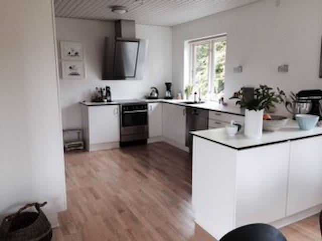 Stort hus med dejlig have - Viborg