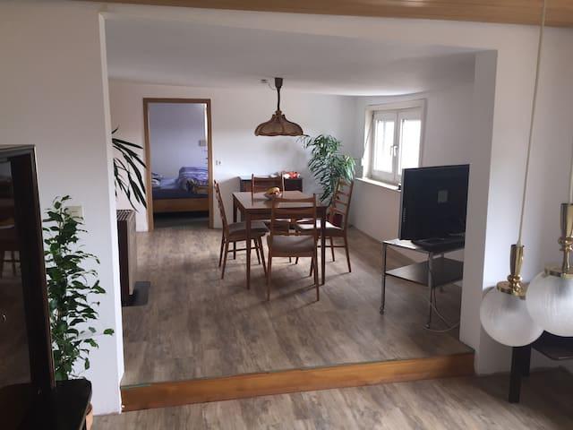Freistehendes Haus m. 2 Zi. Wohnung - Lauffen am Neckar - Huis