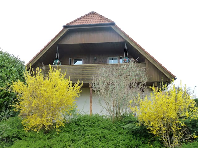 Luxury house with all amenities - Walperswil - Hus