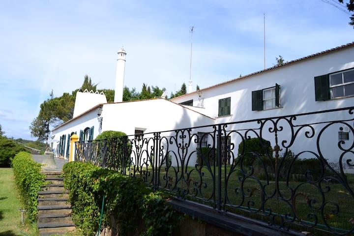 Quinta à beira do Rio Tejo - Abrantes - Villa