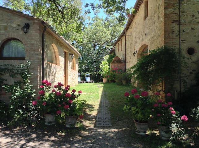 Charming apartments near Siena - Castelnuovo Berardenga - Departamento