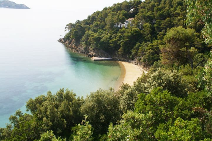 Paradise on a Budget, Private Beach (1) - Skiathos - Huoneisto