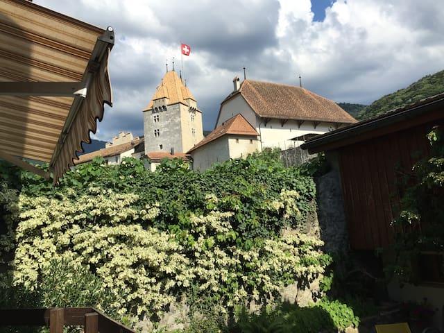 Votre maison au pied du Château - Aigle - 一軒家