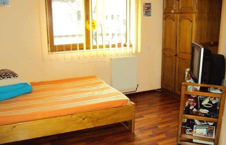 A cozy studio in the heart of city. - Baia Mare - Apartment