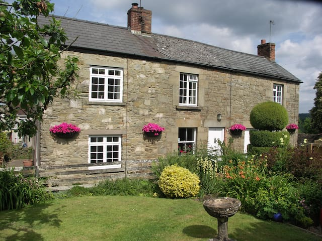 Traditional Foresters Cottage - Bream, Lydney