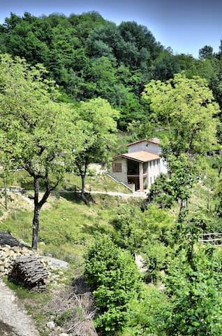 Il Campanaccio -  Oasi di relax - Castelnuovo di Garfagnana