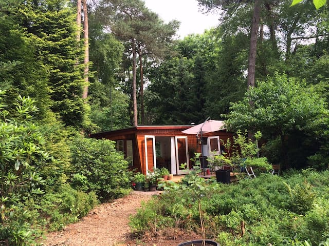 Idylic forest house Veluwe - Beekbergen - Dağ Evi