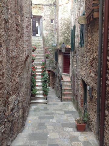 "La ""casa degli uccelli"" a Capalbio - Capalbio - Apartamento"
