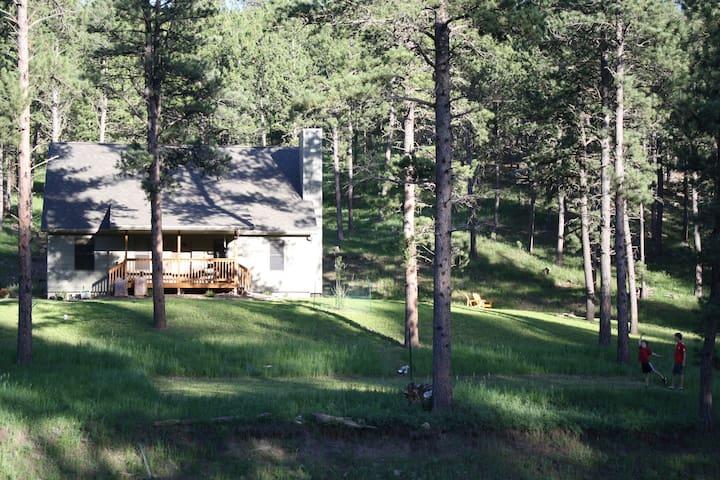 3BR house on 2 acres near Custer - Custer - Ev