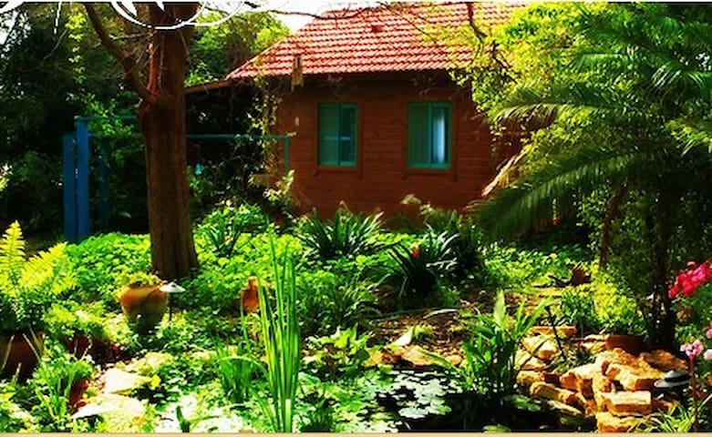 Garden House 1 hour from Tel Aviv - Ein Iron - Alpstuga