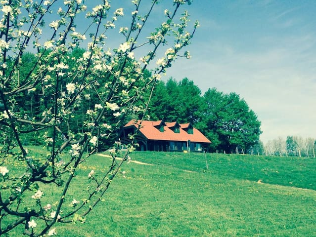 Wooden country house - Donja Stubica - Casa