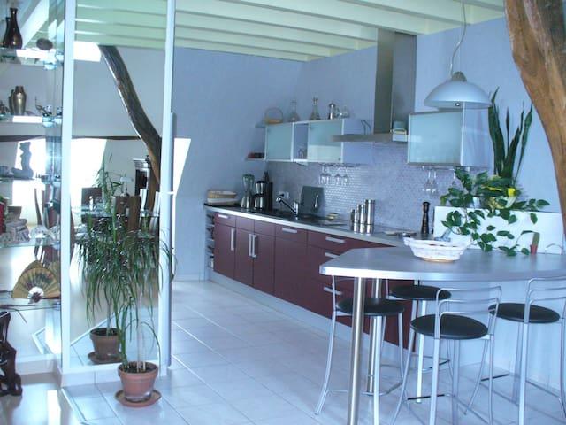 Duplex avec terrasse au CV - Dole - Leilighet
