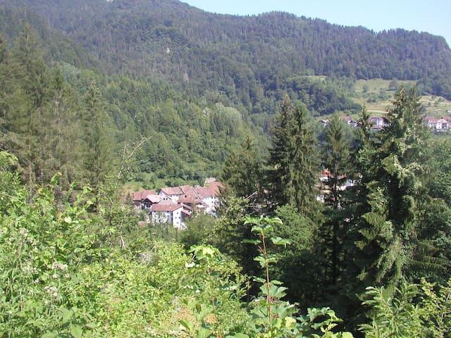 Casa Vacanze in Montagna (Carnia) - Ovaro (Frazione Muina) - Huis