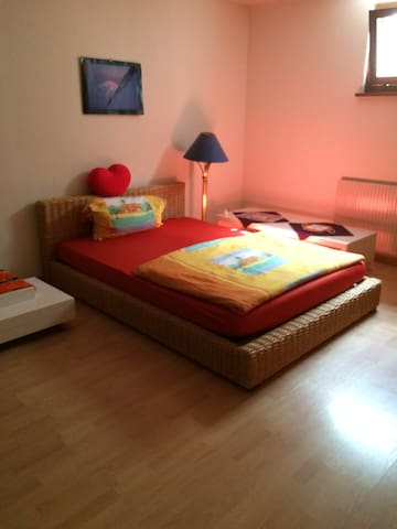 Spacious room in a nice house with - Chéserex - Hus