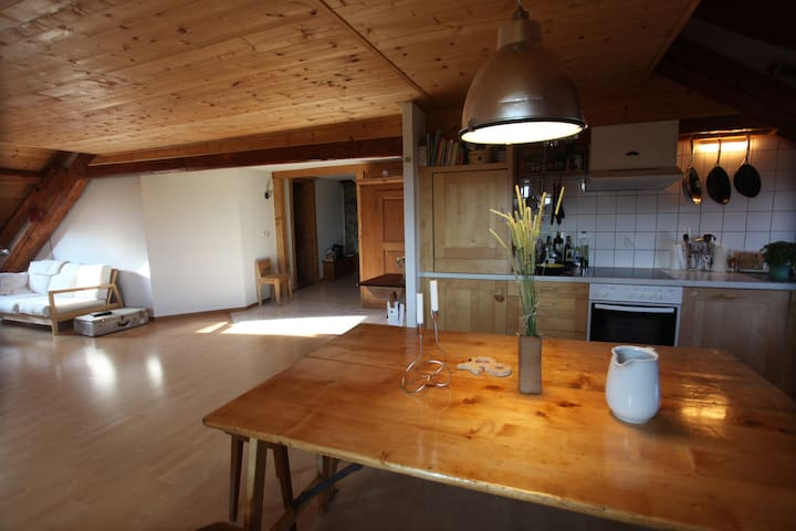 Countryside apartment - Maracon - Daire