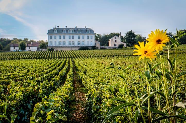 65m2 aptmt Vineyard View in Château - Comblanchien - Leilighet