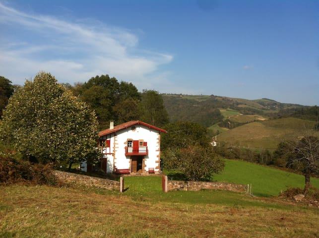 Ancienne bergerie restaurée - Ascarat - 別荘