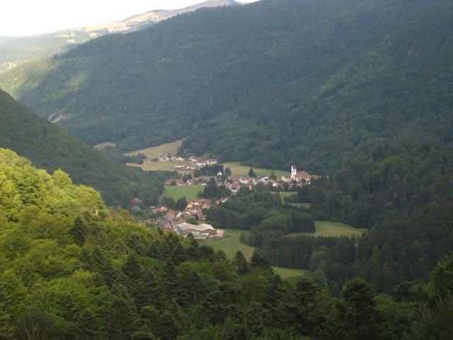 Gîte : vallée de la Wormsa/Alsace - Mittlach - Hus