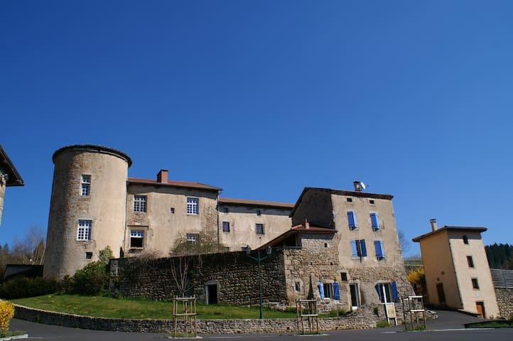 Château St Bonnet Appart propriétai - Saint-Bonnet-le-Chastel - Daire
